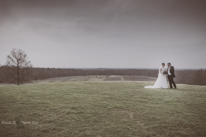 Mapleside Farms Wedding Photo with a gorgeous view